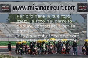 904143_1311   14-15-16/04/2019 ~ Autodromo Misano KTM Juniorcup