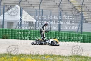 905033_9034 | 03-04-05/05/2019 ~ Autodromo Misano Rehm