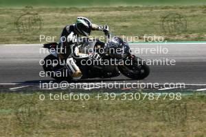 907013_10229   01/07/2019 ~ Autodromo Misano Rosso Corsa